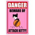 Danger Attack Kitty