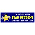Proud Parent Sticker 103